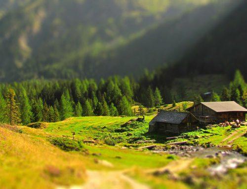 Dolomites Ladin Experience