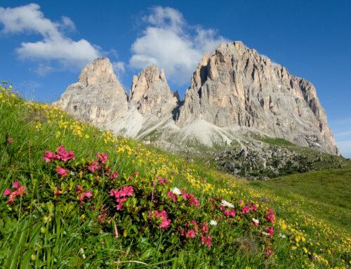 Val di Fassa – Fine estate