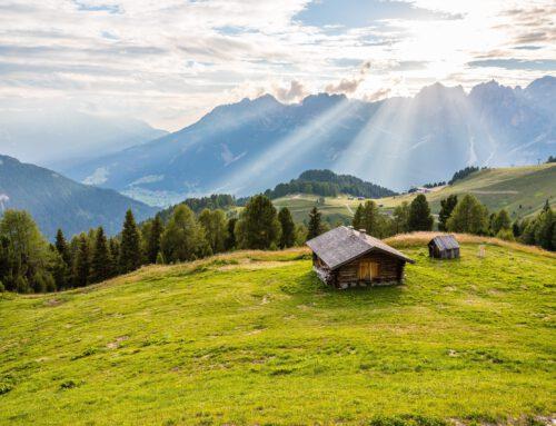 Hai sognato a lungo le Dolomiti